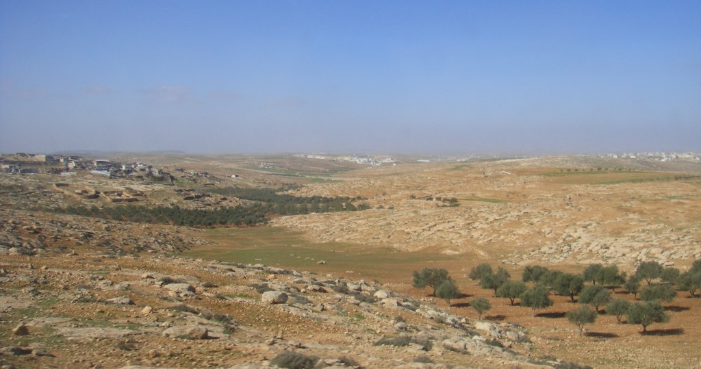 west-bank-landscapes-49